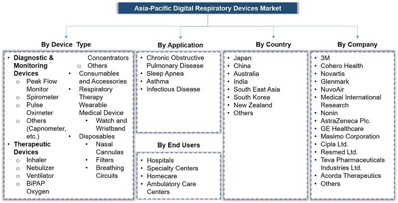 Asia-Pacific Digital Respiratory Device Market Segmentation
