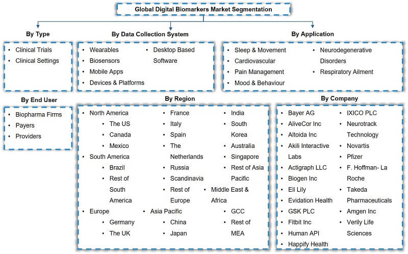 Global Digital Biomarker Market Segmentation