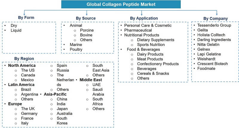 Global Collagen Peptides Market Segmentation
