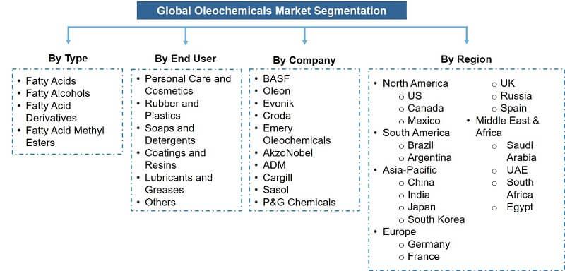 Global Oleochemicals Market Segmentation