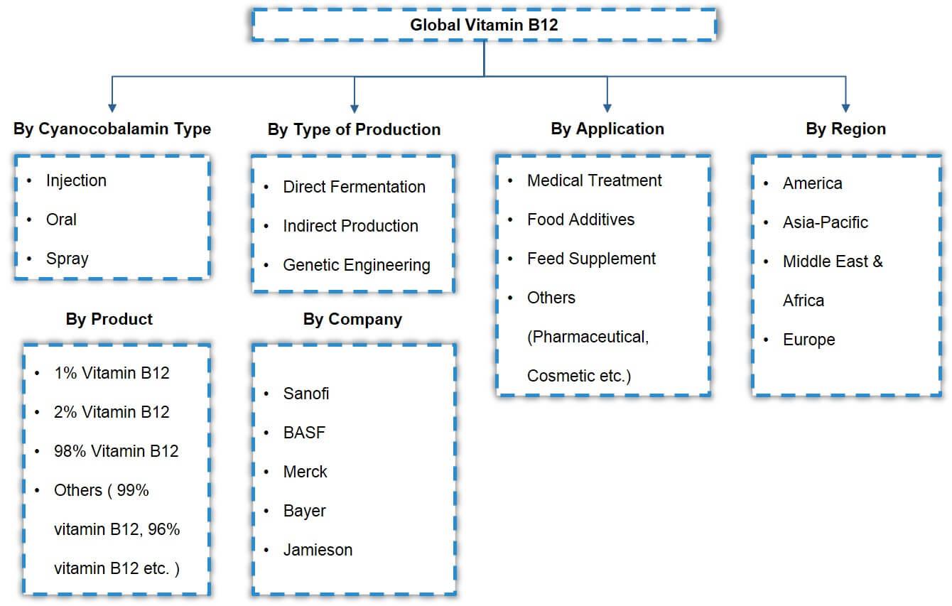 Global Vitamin B12 Market Segmentation