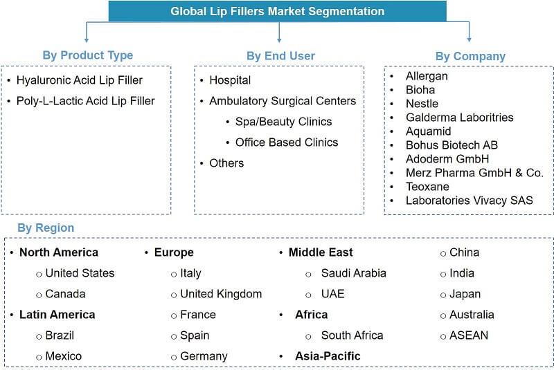 Global Lip Filler Market Segmentation