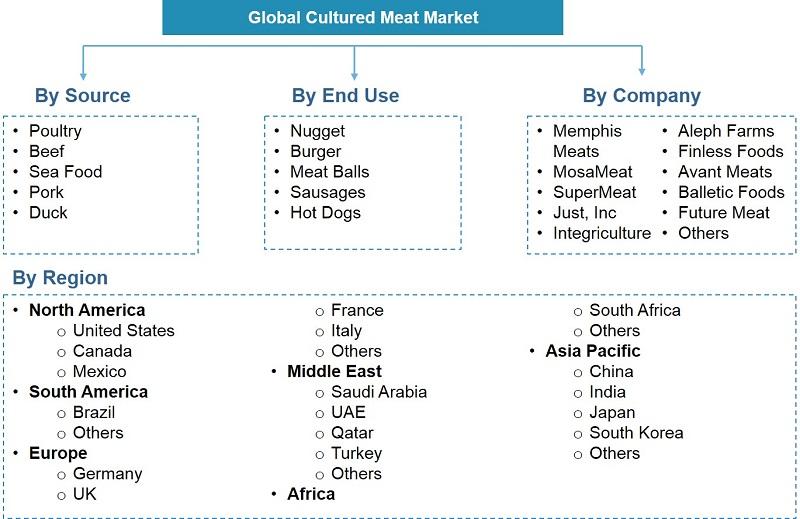 Global Cultured Meat Market Segmentation